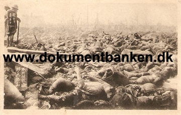 Victims in Tokyo. The great earthquake Tokyo 1 september 1923
